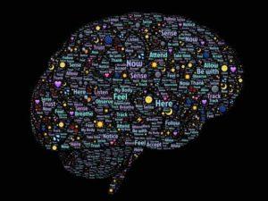 A dominação dos sistemas cognitivos
